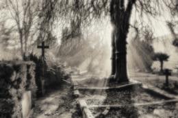 johannesfriedhof-meißen-cölln-stimmung