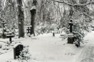 johannesfriedhof-meißen-cölln-winter