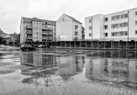 parkplatz-hunde-netto