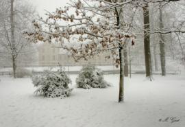schnee-festung