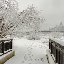 Am Winterhafen mit Blick zur Albrechtsburg