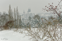 Winterlandschaft Proschwitz