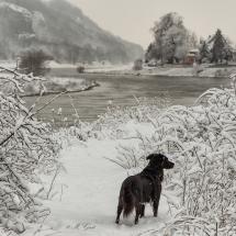 winterhafen-meißen-schnee
