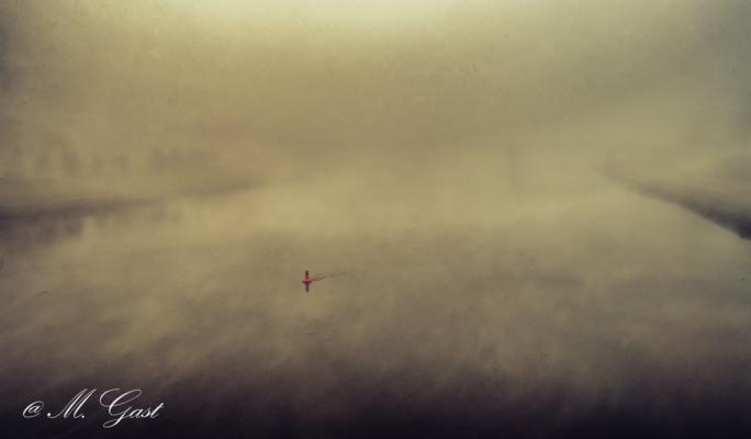 nebel-auf-der-elbe