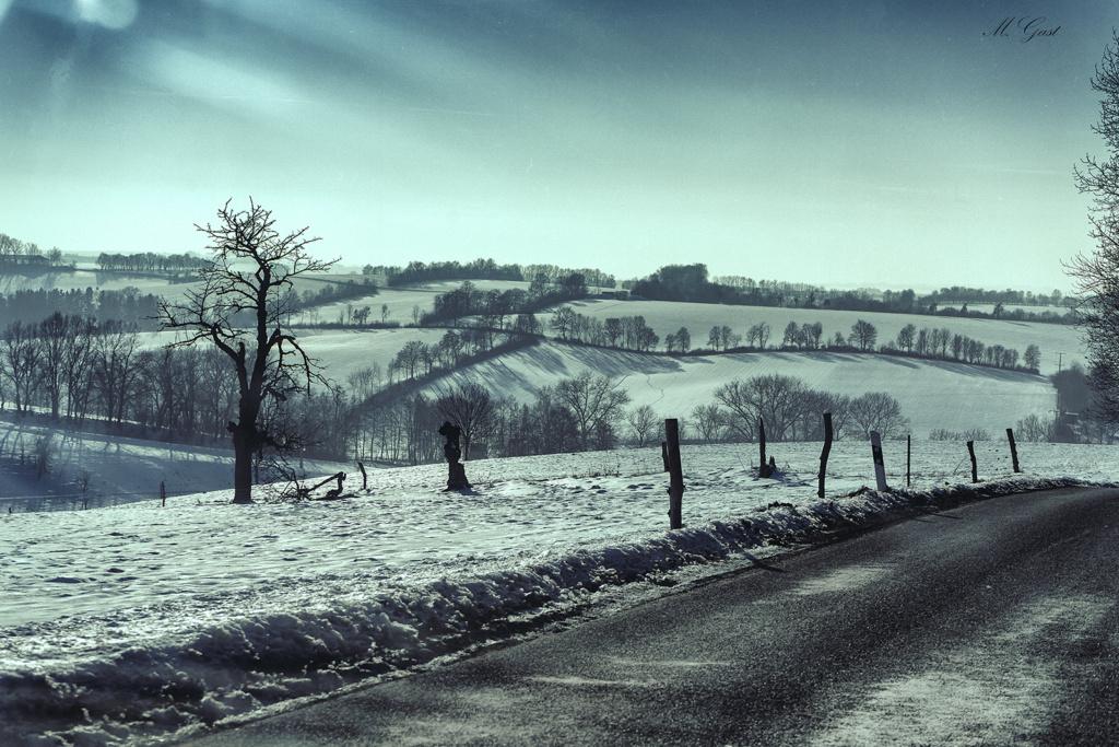 leutewitz-winterlandschaft