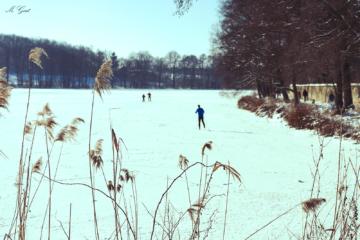 moritzburger-winterlandschaft-3