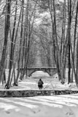 moritzburger-winterlandschaft-4