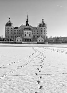 schloss-moritzburg-sw-winter