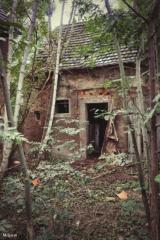 scheune - lost place