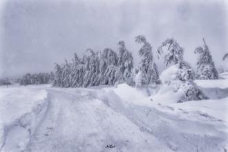 cínovec 2019 viel schnee