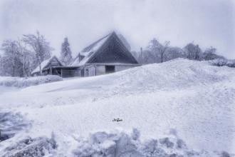 cínovec schnee