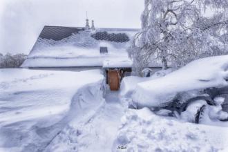 cínovec schnee haus