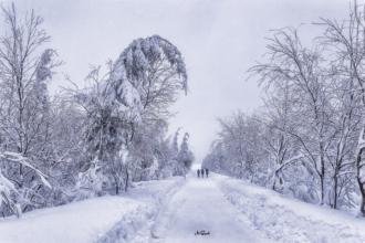 cínovec schnee wandern