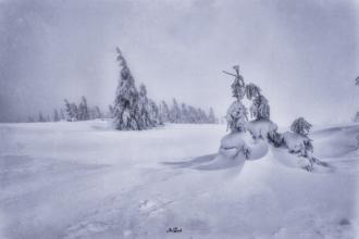 cínovec schneelandschaft