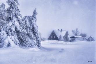cínovec schneemassen