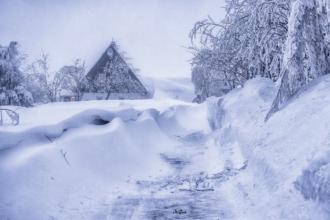 cínovec schneewehen